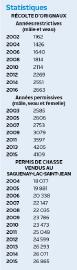 CHASSE ET PÊCHE / Le nombre d'orignaux abattus... - image 1.1