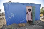 Un abri provisoire construit avec des bâches plastiques.... (AFP) - image 2.0
