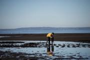 Près de Puerto Montt, à environ 1000 kilomètres... (AFP) - image 2.0