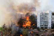 À Haïfa, des flammes de plusieurs mètres léchant... (PHOTO AFP) - image 4.1