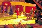 Les marchés de Noël ponctuent le temps des Fêtes et favorisent les achats... - image 13.0