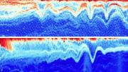 Des échographies prises dans le fjord du Saguenay... (Photos courtoisie) - image 1.0