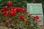 La Roseraie Cédrika-Provencher a été inaugurée en juin... (Archives, Le Nouvelliste) - image 1.0