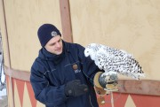 Un animateur accompagné d'un harfang des neiges... (Janick Marois, La Voix de l'Est) - image 2.0