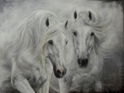 Carolle Beaudry a fait du cheval sa spécialité.... (tirée de Facebook) - image 2.0