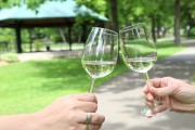 Accompagner son pique-nique d'un verre de vin a... (archives La Voix de l'Est) - image 5.0