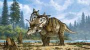 Une espèce de dinosaure qui avait probablement le... (Photo fournie par le Musée canadien de la nature) - image 1.0