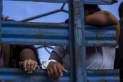 Suspected Mara Salvatrucha, or MS,  gang members... (The Associated Press) - image 5.0