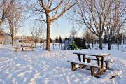 Le parc Saint-André dans Neufchâtel... (Le Soleil, Patrice Laroche) - image 9.0