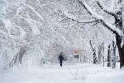 Sans faire de victimes, la neige est tombée... (AFP, Shah Marai) - image 1.0