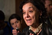 Rita de Santis, ministre des Institutions démocratiques... (photo Jacques Boissinot, archives la presse canadienne) - image 1.0