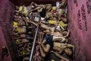 Basé aux Philippines, Noel Celis monte sur la... (Photo Noel Celis, archives Agence France-Presse) - image 1.1