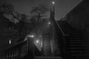 Prague la nuit, vers 1950-1959, Josef Sudek,impression gélatine... (Photo fournie par le Musée des beaux-arts du Canada) - image 2.0