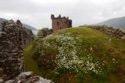 Les ruines d'Urquart Castle rappellent le passé violent... (Photo Michel Laliberté, collaboration spéciale) - image 3.0