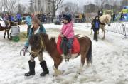 La fermette installée au Carnaval de Sherbrooke ainsi... (Maxime Picard) - image 1.1