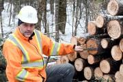 La porte-parole du ministère des Forêts, de la... (Photo Le Quotidien, Rocket Lavoie) - image 1.0