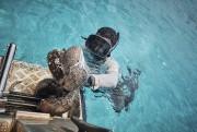 Un pêcheur récolte des holothuries (concombres de mer)... (AFP, Theo ROUBY) - image 2.0