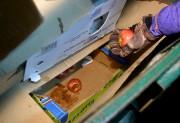 Dans une poubelle, le couple suivi par Le... (Le Soleil, Erick Labbé) - image 3.0