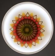La fleur du niveau 3... (Michel Dubreuil) - image 2.0
