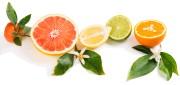 Les agrumes sont remplis de vitamines (A, B,... - image 7.0