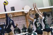 En volleyball féminin collégial, division 2, l'équipe des... (Le Quotidien, Michel Tremblay) - image 1.0