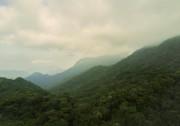 L'ascension du mont Gunung Brinchang nous mène aux... (Photo Joëlle Choquette et Iouri Philippe Paillé, collaboration spéciale) - image 1.0