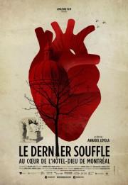 Le dernier souffle, au coeur de l'Hôtel-Dieu de... (Image fournie par Amazone Film) - image 1.0