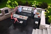 >Enfin une nouvelle gamme de barbecue Napoléon abordable... (courtoisie) - image 1.0