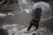 Après la pluie et la neige, le printemps... (PHOTO PATRICK SANFAÇON, archives LA PRESSE) - image 1.0