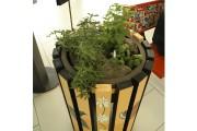 Quatre poubelles ont été transformées en jardinières où... (Janick Marois, La Voix de l'Est) - image 2.0