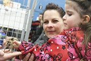 Cette petite fille ne semblait pas du tout... (Michel Tremblay) - image 1.0