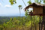 Rumah Pohon signifie «cabane dans les arbres».... (Photo Audrey Ruel-Manseau, collaboration spéciale) - image 2.0