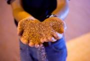 Basée à Toronto,Potash Ridge fabrique des fertilisants à... - image 1.1