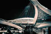 Le Stade olympique... (Photo fournie par les éditions de l'Homme) - image 2.0