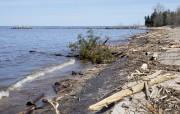 De nombreux débris jonchent la plage du Rigolet... (Photo Le Quotidien, René Bouchard) - image 1.1
