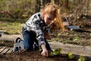 Pour motiver les enfants, planter un rang de... (Photo Bernard Brault, La Presse) - image 3.0