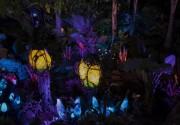 Huit ans après la sortie du film Avatar,... (Photo fournie par Disney) - image 3.0