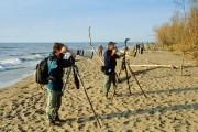 Observation d'oiseaux dans le parc national de la... (Photo Brian Morin, fournie par Parcs Canada) - image 5.0