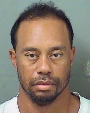 Tiger Woods... (AP) - image 4.0