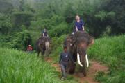 Le parc Baan Chang est l'un des centres... (Photo tirée du site Facebook du parc) - image 6.0