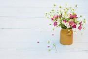 Au jardin comme en bouquet, les fleurs locales et de saison... (Photo Thinkstock) - image 3.0