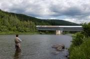 Les pêcheurs sportifs québécois remettent àl'eau lesdeuxtiers des... (PHOTO JEAN GOUPIL, ARCHIVES LAPRESSE) - image 1.1