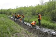 Une douzaine d'élèves de l'école Massey-Vanier a planté... (gracieuseté Valérie Nantais-Martin) - image 5.0
