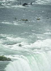 La trapéziste a indiqué que le vent avait... (La Presse canadienne, Nathan Denette) - image 1.0
