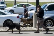 Des policiers faisaient des recherches à l'aéroport international... (AP, Jake May/The Flint Journal-MLive.com) - image 1.0