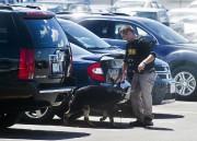 L'attaque perpétrée hier a eu lieu dans la... (PhotoJake May, Associated Press) - image 1.0