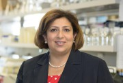 Naglaa Shoukry, chercheuse du Centre de recherche du... (PHOTO FOURNIE PAR LE CHUM) - image 1.0