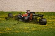 Fernando Alonso s'est retrouvé à jouer les tondeuses... - image 11.0