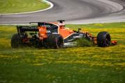 Fernando Alonso s'est retrouvé dans le gazon après... - image 5.0