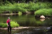 Une nouveauté cette année, la pêche à la... (Julie Moffet, Forêt Montmorency) - image 8.0